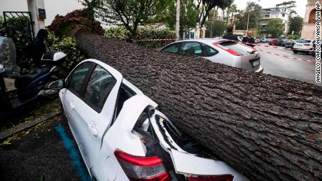 A car is crushed under a fallen tree after being hit by strong winds in Rome on Monday.