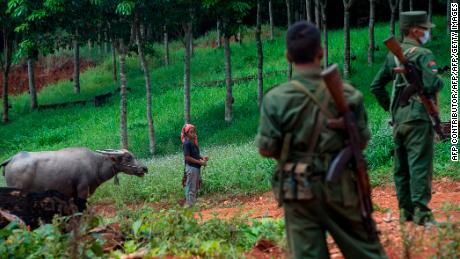 This photo, taken on June 26, 2017, shows an ethnic woman with a buffalo overlooking the United Wa State Army members in Poung Par Khem, near the Thai-Myanmar border.