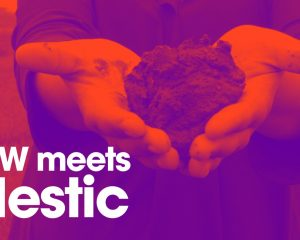 Meet Mestic, the company that makes the cloth from the cow
