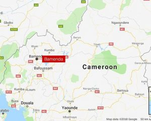 Cameroon's children were released after the kidnapping