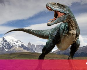 New types of dinosaurs were discovered in the Neuquen of Patagonia