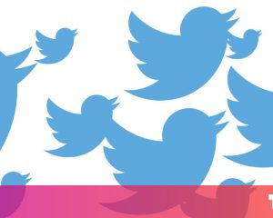 Twitter privacy settings are explained