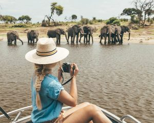 The best time to travel to Botswana • The blonde abroad