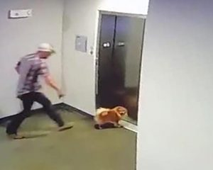 The video shows a man rescuing his neighbor's dog after his leash is stuck in the elevator doors