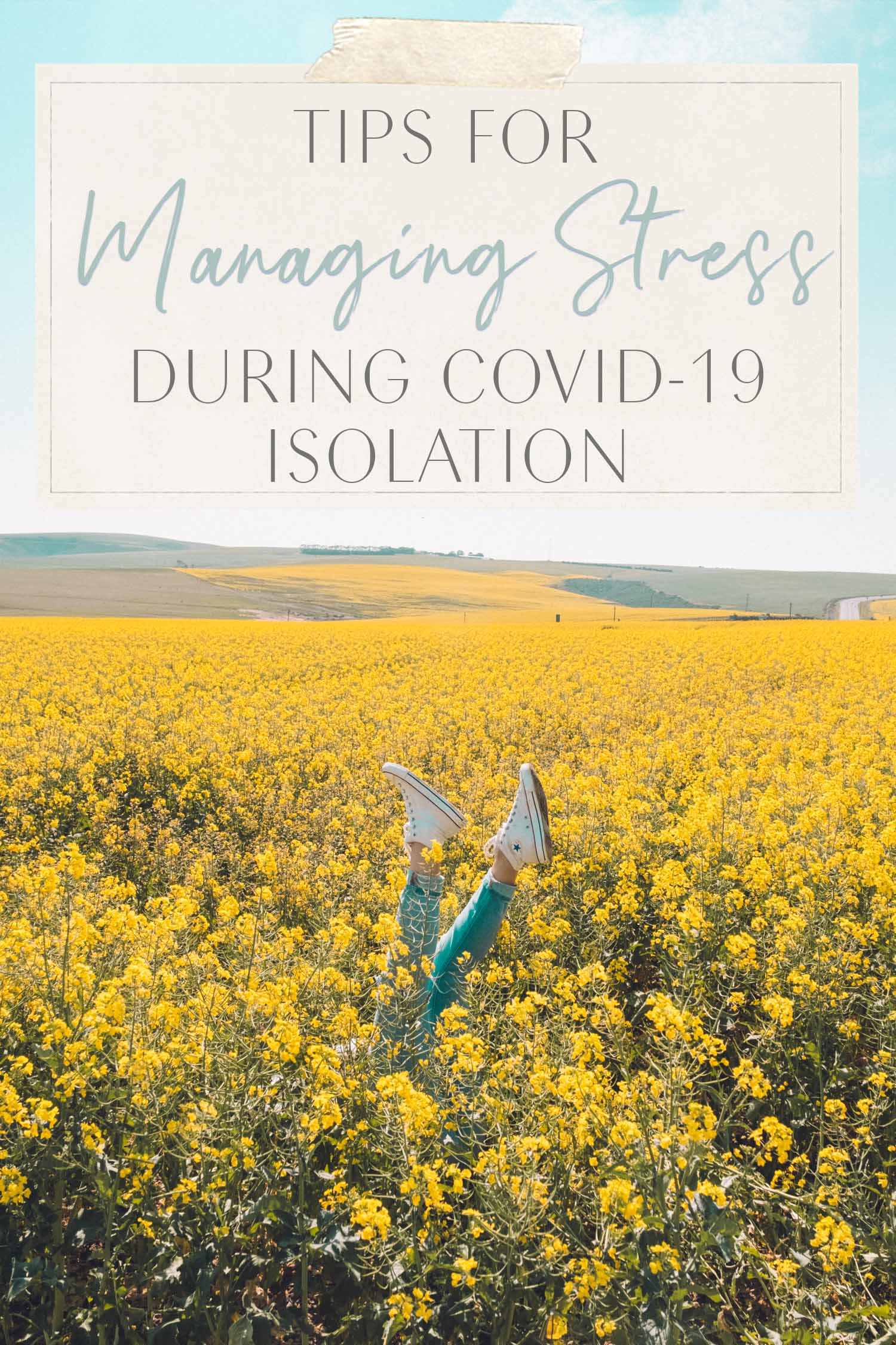 Yellow flowers Stress free stress management tips during Coronavirus Covid